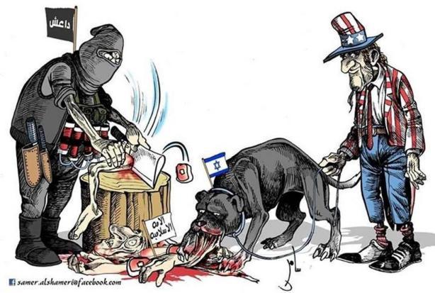 israel dog
